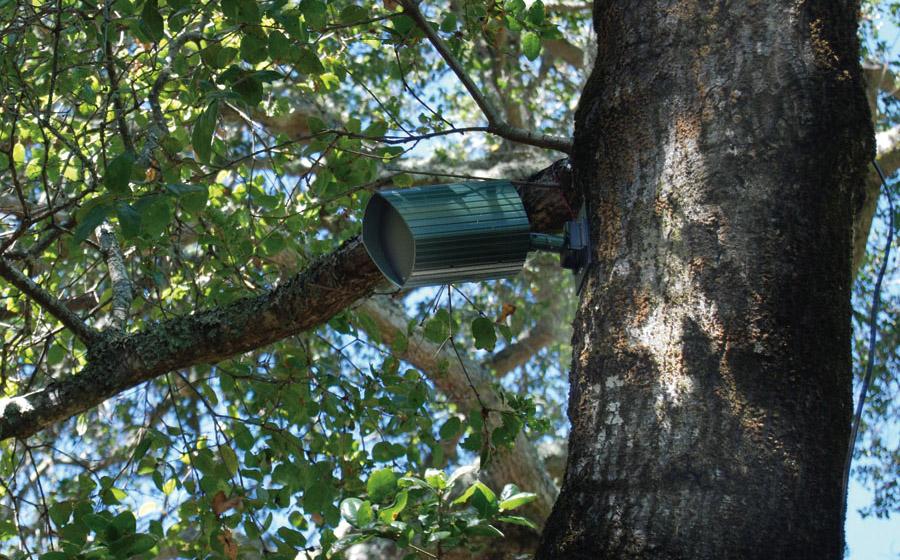 Hidden Outdoor Speakers